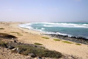 cape verde sal kite beach