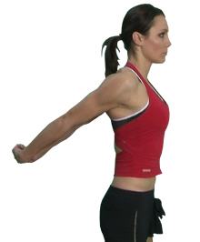 chest and anterior shoulder stretch