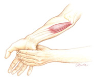 wrist_extension_stretch2